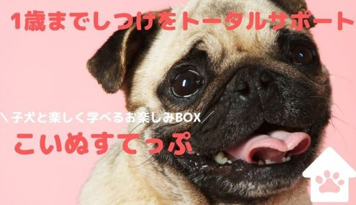 【こいぬすてっぷ】の評判や口コミ|子犬のしつけ方と育て方