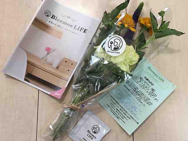 Bloomee LIFE(ブルーミーライフ)お花の中身